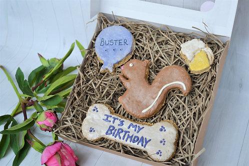 'Mr Squirrel' gift box