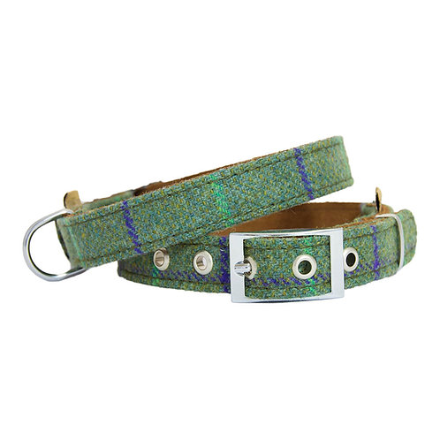 green tweed dog collar