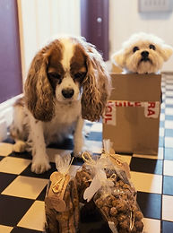 dog treats, mailorder