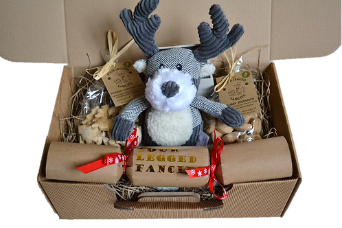 'Puppy's First Christmas' Hamper