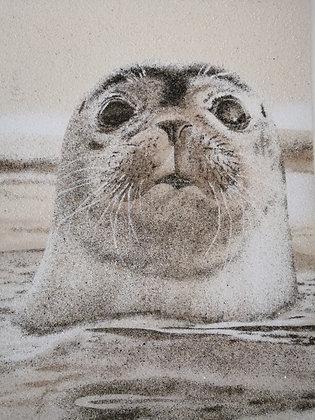Tableau de sable Portrait Phoque