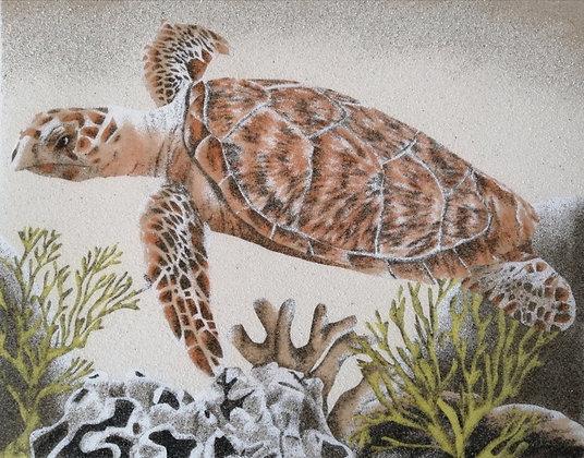 Tableau de sable d'une tortue et coraux