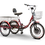 "Thumbnail: The ""Trike"" EW-29"