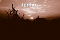 HASSINKBRINK.jpg