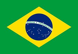 486px-Flag_of_Brazil.svg.png