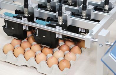 FOODtij printing on eggs.png