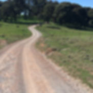 Rhyanna Road Southern Tablelands cycling trail