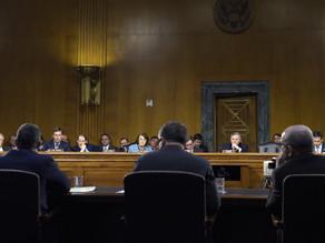 Russian deception influenced election due to Trump's support, senators hear