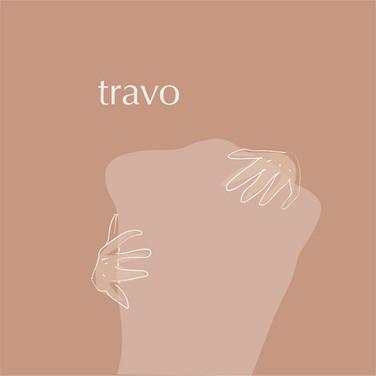 Paulo Novaes - Travo