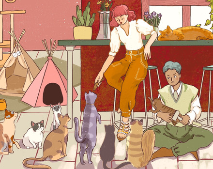Zodiacs with Cats