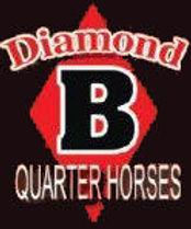 Diamond B Cutting Horses