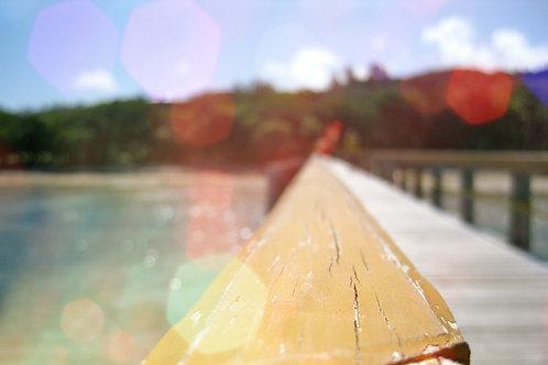 Fiji Dock - PERSONAL LICENSE