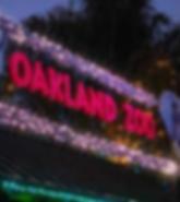 94605- Oakland lifestyle