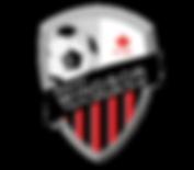 swysc_logo_print_web.png