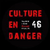 culture-en-danger-46.jpg