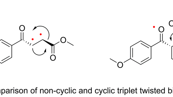Comparison of the Photochemistry of Acyclic and Cyclic 4-(4-Methoxy-Phenyl)-4-Oxo-but-2-Enoate Ester