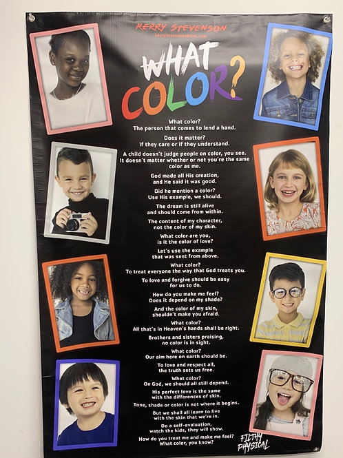 What Color ?  36 x 24 Poster