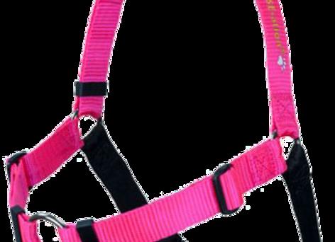 Softtouch-Geschirr M/L 1 in pink
