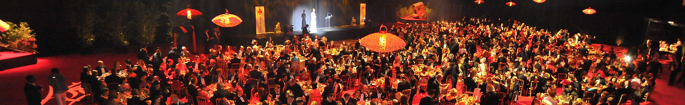 Swiss Red Cross Ball 2012 China