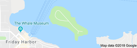 Brown Island.png