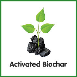Activated Biochar with Diagram logo.jpg