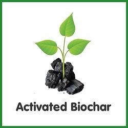Activated Biochar with Diagram logo.jpg