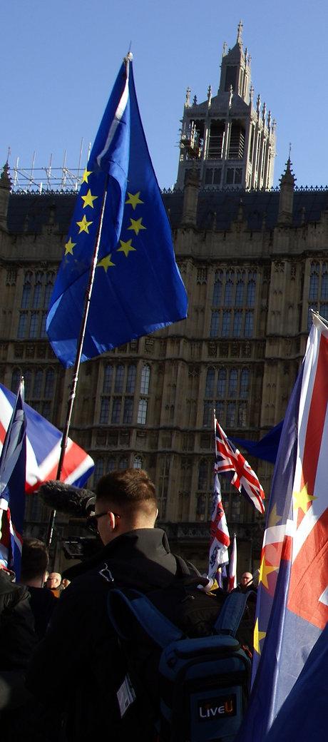 Brexit_Demonstration_Flags.jpg