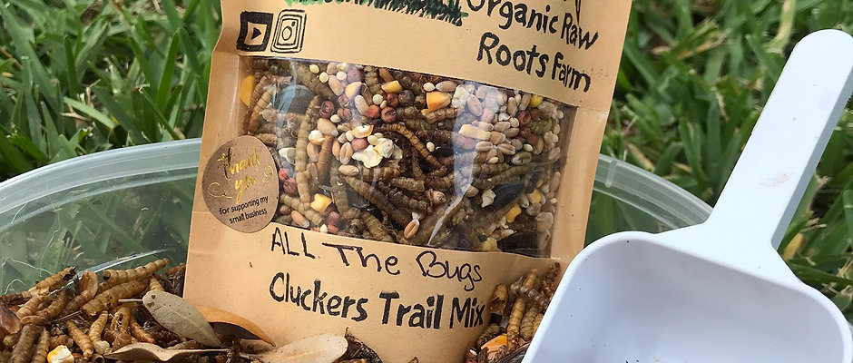 Bug a boo cluckers trail mix ( all the bugs trail mix)1 lb