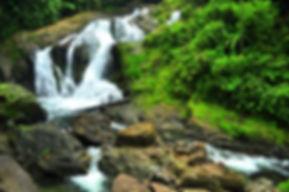 waterfalls drake bay