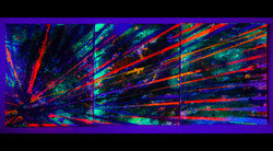 New Beginnings #4 2020. 14x33 inches. Spray Paint, Oil, Acrylic, Soda, Glows in the dark/UV reactive