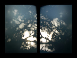 03_shadows_2007