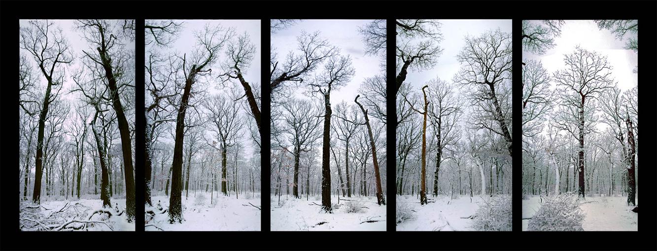 Forever-Winter 2006