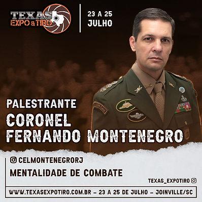 Cel Fernando Montenegro.jpeg