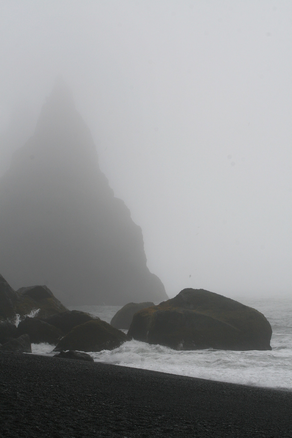 Iceland Black Sand Beach 1.jpg