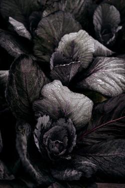 20201209 - Delicious - Bistro Lof - © Ch