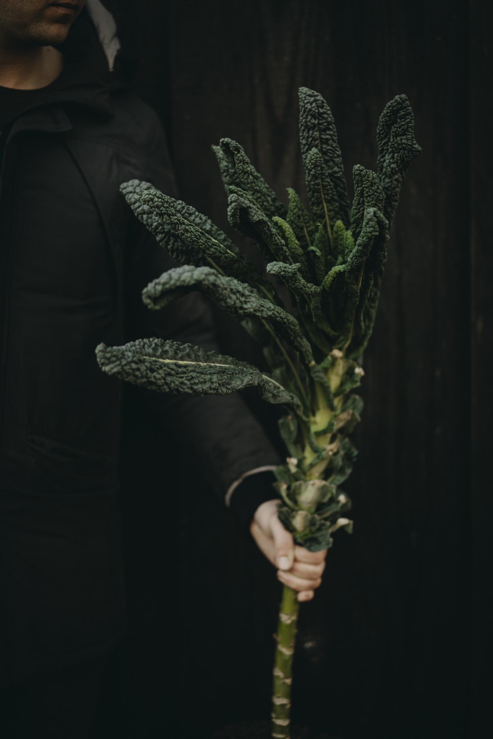 20190119_-_Shoot_my_food_-_Rijnzicht_-_C
