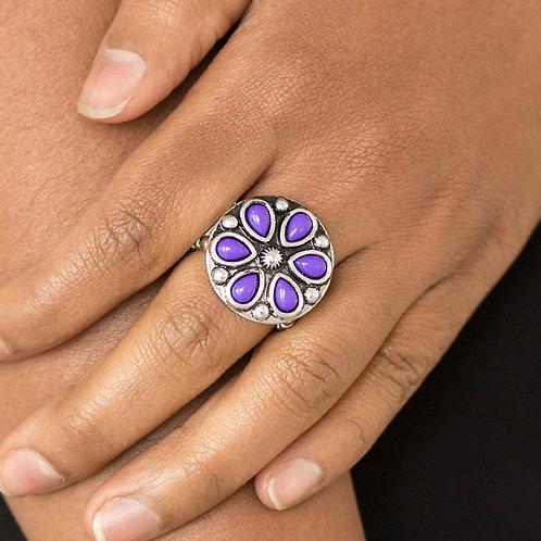 Color me Calla Lily - purple