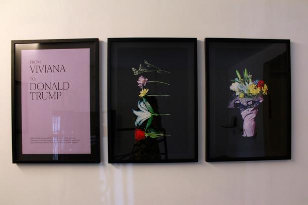 Lizania Cruz, Flowers for Immigration, Viviana, 2017