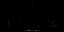 erwin-sattler-noir-logo - Somazzi Lugano