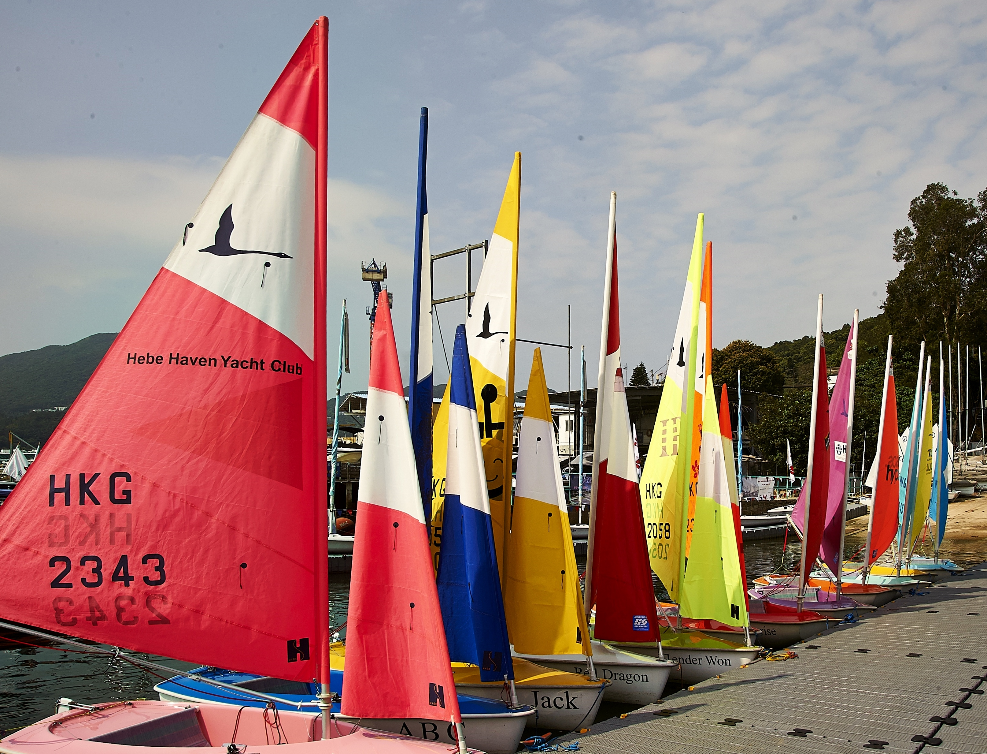 _Our Colourful Hansa Fleet