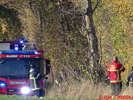 Brand i et træ mellem Brovejen og Søndermarksvej