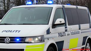 Politiet fandt patroner i bil