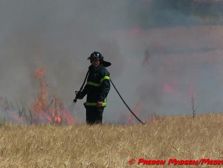 Brand forvandlede 20 hektar korn til aske i Fensmark.