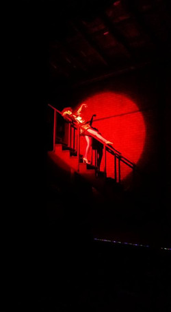 christy spotlight