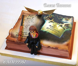 Торт Гарри Поттер