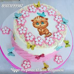 Торт котенок