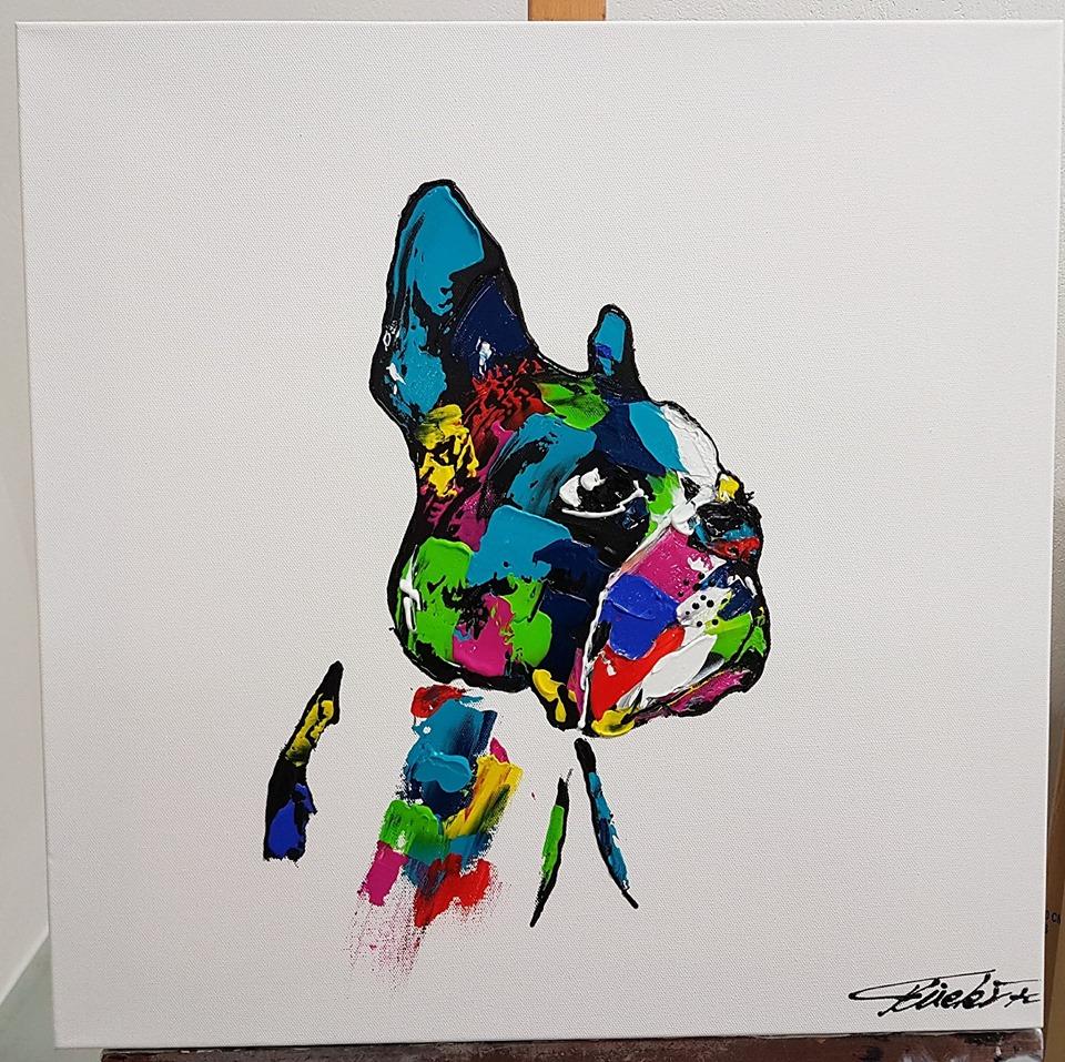 boston terrier pop