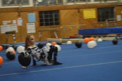 TGS Gymnastics & Dance Halloween 2014 090.JPG