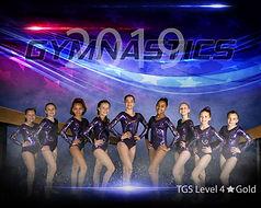 TGS Gold8x10.jpg