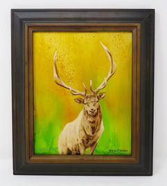 Elk with color- frame.jpg